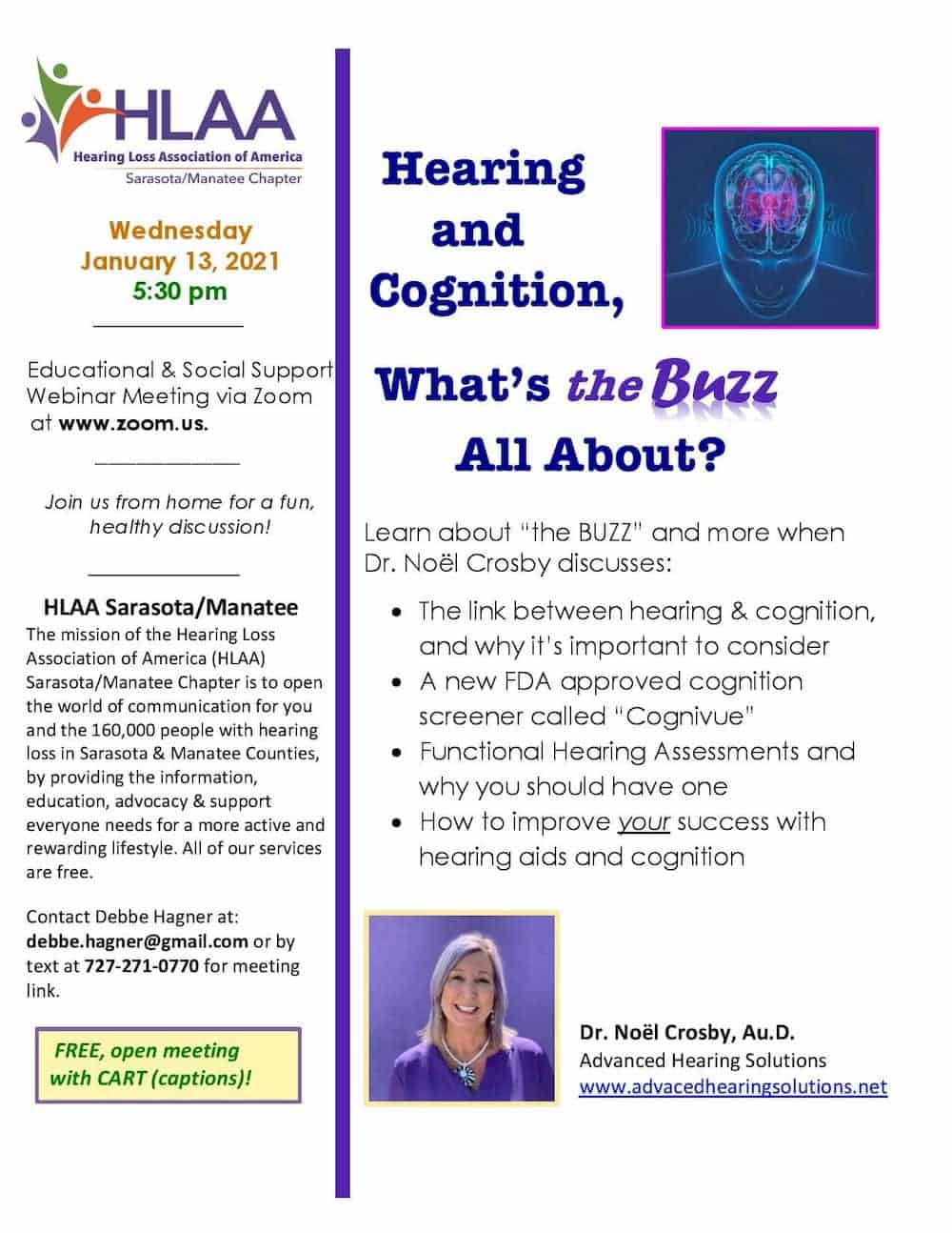 Jan 13 Dr. Noël Crosby Hearing and Cognition, Educational & Social Support What's the Buzz All About?